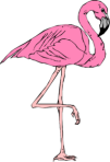 1320951795688519853Pink Flamingo.svg.med