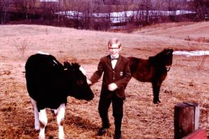 Peter and the calf, named Sock-It-To-Me Sunshine, with Shetland pony, Rosie, in the background